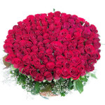 100_red_roses_beautiful_bunch