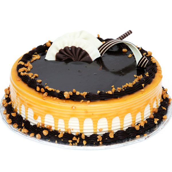 Send Cake To Ludhiana 10 Off Online Cake Delivery In Ludhiana