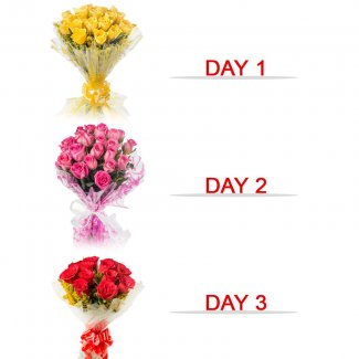 Online Red Roses For Valentines Day Firozpur Save 25 Delivery In 2
