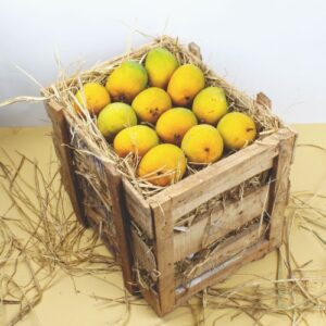 Three Dozen Alphonso Mangoes