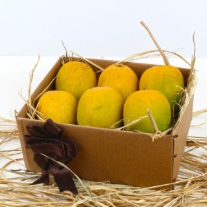 Send Fresh Mangos to Punjab, Mothers Day Fresh Fruits to Punjab, Fresh Mangos Gifts to Punjab, Gifts and Fresh Fruits to Punjab, Send Fresh Mangos and Mango cake to Punjab, Fresh Fruits to Punjab, Mothers Day Fresh Fruits to Punjab, Mother's Day Fresh Fruits to Punjab, Fresh Fruits to Punjab, Send Fresh Fruits to Punjab, Send Fresh Fruits and Fresh Fruits to Punjab, Send Fresh Fruits and cake to Punjab, Send Mother's Day Gifts to Punjab, Send Fresh Fruits to Punjab, Mothers Day Fresh Fruits to Patiala , Mothers Day Fresh Fruits to jalandhar, Mothers Day Fresh Fruits to Moga, Mothers Day Fresh Fruits to Ludhiana, Mothers Day Fresh Fruits to Moga, Mothers Day Fresh Fruits to Amritsar, Mothers Day Fresh Fruits to Ferozpur, Mothers Day Fresh Fruits to faridkot, Mothers Day Fresh Fruits to Bathinda, Mothers Day Fresh Fruits to Fazilka , Mothers Day Fresh Fruits to Kapurthala