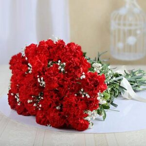 bunch-of-30-red-carnations