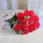 bunch-of-carnations