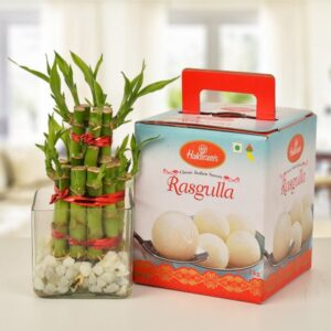 Rasgulla with bamboo plant